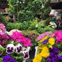 photo taken at chelsea garden center by ben v on 5172015 - Chelsea Garden Center
