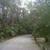 Foto tirada no(a) Parque Ecológico do Córrego Grande por RFogaca em 10/21/2012
