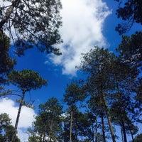 Photo taken at Parque Ecoturístico Rancho Nuevo by Humberto F. on 3/18/2017