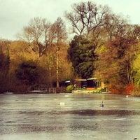 1/26/2013 tarihinde Genevieve S.ziyaretçi tarafından Hampstead Heath Ponds'de çekilen fotoğraf