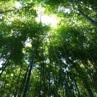Photo taken at 竹の庭 by bianconero04 on 10/21/2012