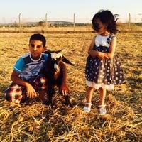 Photo taken at çiftlikte by Faruk on 6/29/2015