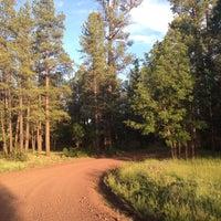 Photo taken at Mormon Lake by Cassie W. on 6/18/2015