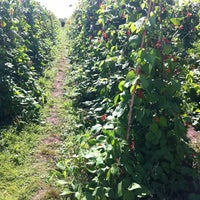 Photo taken at Cat And Fiddle Strawberry Fields by Miss L. on 8/2/2014
