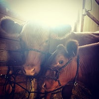 Photo taken at Midland County Fairgrounds by Jake S. on 8/13/2014