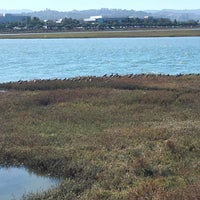 Photo taken at San Francisco Bay Trail - Belmont, Bay & Steinberger Sloughs by Meredith W. on 9/29/2016