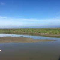 Photo taken at San Francisco Bay Trail - Belmont, Bay & Steinberger Sloughs by Meredith W. on 3/9/2017