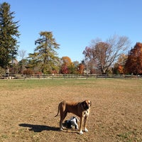 Photo taken at Rowayton Dog Park by Thomas C. on 11/10/2013