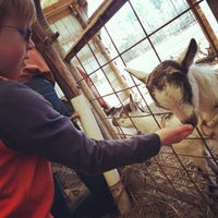Photo taken at The Inn at Celebrity Dairy by Stephanie C. on 3/9/2013