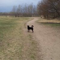 Photo taken at Rice Creek Dog Park by Lars L. on 4/27/2014