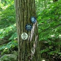 Photo taken at Hubbard Lodge Trail, Rte 9 by Marcelle on 8/25/2013