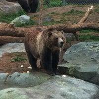 Photo taken at Hogle Zoo
