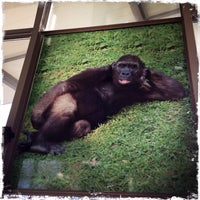 Photo taken at Zoo Schmiding by Josef T. on 12/23/2013