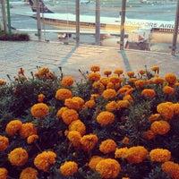 Das Foto wurde bei Sunflower Garden von Luis V. am 6/14/2013 aufgenommen