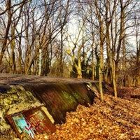 3/2/2014 tarihinde Fotostrasseziyaretçi tarafından Volkspark Schönholzer Heide'de çekilen fotoğraf
