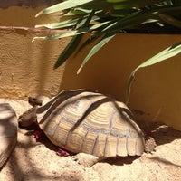 Photo taken at Mauritalia Hotel by Juliia on 4/17/2014