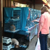 Photo taken at Unleashed by Petco by Kimilee B. on 5/31/2014