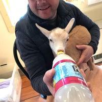 Photo taken at Jenness Farm LLC | Goat Milk Soaps by Kimmy C. on 4/9/2017