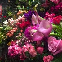 Photo taken at Aoyama Flower Market by Jina P. on 11/18/2015