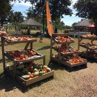 Photo taken at Blessington Farms by Fernando C. on 10/8/2016