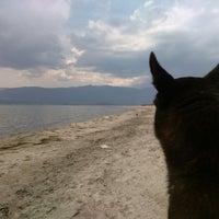 Photo taken at Denetko Plajı by çağdaş ö. on 4/14/2015
