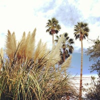 Photo taken at Le Parker Méridien Palm Springs by Zahid Z. on 2/16/2013