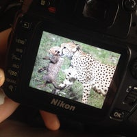 Photo taken at Manyara Wildlife Safari Camp by Manon D. on 12/24/2014