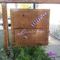 Photo taken at Lavender Ridge Winery by Leilani on 10/13/2013