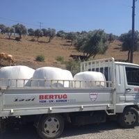 Photo taken at Çöğürlük Köy Kahvesi by MURAT TAYYAR Ç. on 6/28/2016