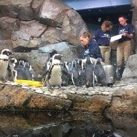 Foto tomada en Inside Penguin Crawl Tube por Terrence S. el 8/25/2017