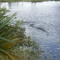 Photo taken at Big Cypress National Preserve by J M. on 5/27/2013