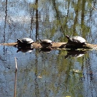 Photo taken at Cincinnati Nature Center (Rowe Woods) by Sue P. on 4/8/2012