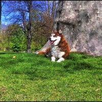 Photo taken at Sunshiny Day by Richard J B W. on 4/22/2012