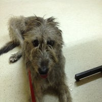 Photo taken at Bay Pines Veterinary Clinic by Kevin E. on 7/26/2012