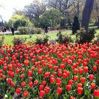 Foto diambil di Sherwood Gardens oleh Thomas N. pada 4/8/2012