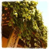 Photo taken at Chateau Thomas Winery by Shawn S. on 8/10/2012