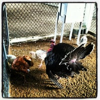 Photo taken at Calhoun County Fairgrounds by Samantha L. on 8/15/2012