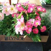 Photo taken at Lynde Greenhouse & Nursery by Krista K. on 6/3/2012