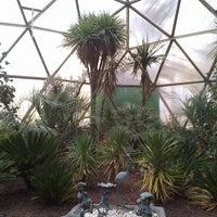 3/23/2014 tarihinde Muhlis Can Ö.ziyaretçi tarafından Odunpazarı Botanik Parkı'de çekilen fotoğraf