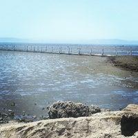 Photo taken at San Leandro Marina by Melissa M. on 6/30/2013