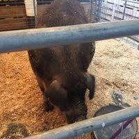 Photo taken at Swine Barn by Bill K. on 8/29/2017