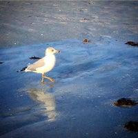 Photo taken at Sunset Beach by Misty B. on 1/26/2015