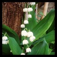 Photo taken at S & Us Garten by Sabine S. on 5/25/2013