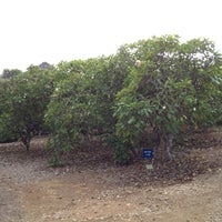 ... Photo Taken At Koko Crater Botanical Garden By Frosty On 10/27/2012 ...