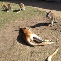 Photo taken at Tanganyika Wildlife Park by Eazy on 3/19/2013