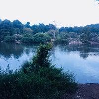 Снимок сделан в Zoo Lake пользователем Asude M. 1/30/2018