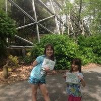 5/10/2013にJim C.がQueens Zoo Aviaryで撮った写真