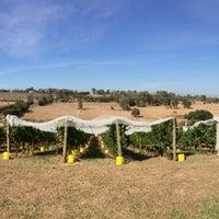 Photo taken at King's of Kangaroo Ground by Kevin K. on 3/28/2014