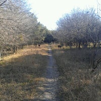 Photo taken at McAllister Park by Francisco H. on 2/2/2013