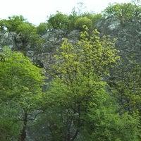 4/17/2014 tarihinde Csaba V.ziyaretçi tarafından Csobánka'de çekilen fotoğraf